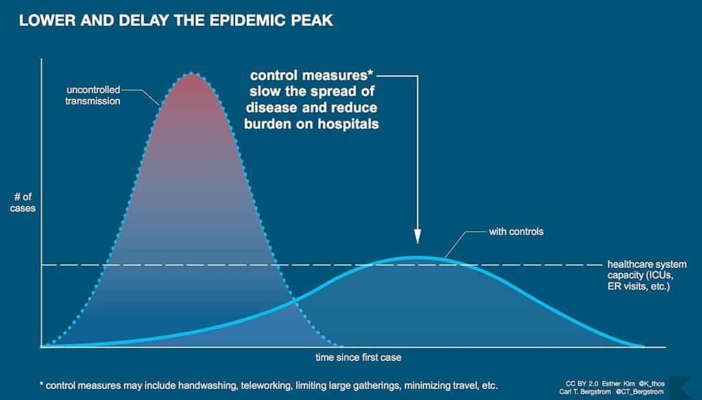 flatten the curve graph
